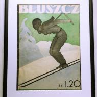 bluszcz21011933