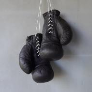 bokser 1