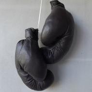 bokser 2