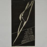 plakaty13-11
