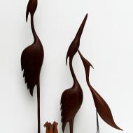 ptaki1