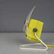 żółty witrak_1
